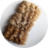 cheveux en bande blonds